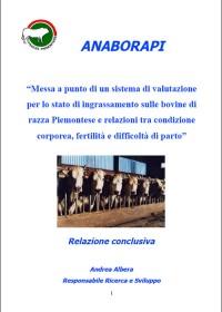 Messa a punto di un sistema di valutazione per lo stato di ingrassamento sulle bovine di razza Piemontese e relazioni tra condizione corporea, fertilità e difficoltà di parto