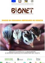 Razze di Faraona impiegate in Veneto