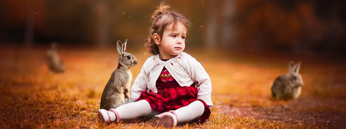 Il coniglio nella pet therapy