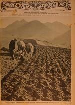 Preparazione del terreno per le semine marzuole