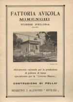 Fattoria avicola Mirenghi