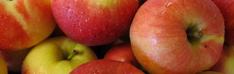 Recupero e valorizzazione delle mele irpine