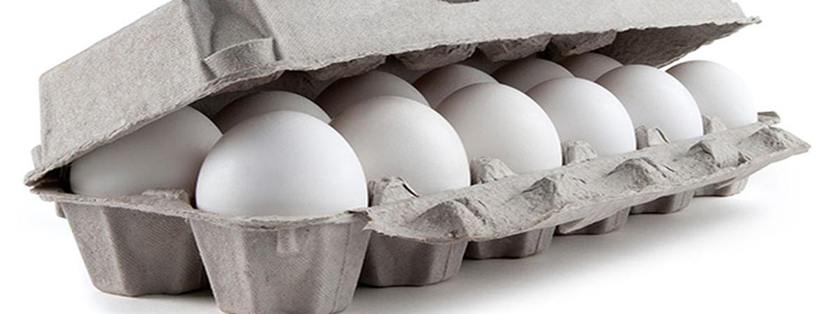 Le uova bianche di Valvasone