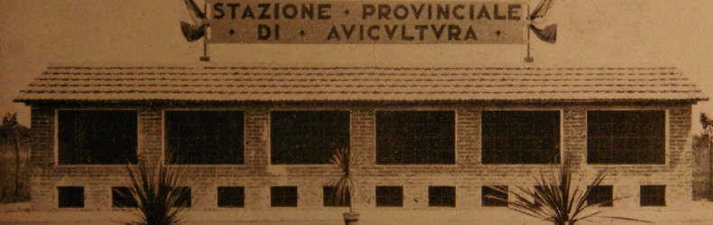 Il Pollaio Provinciale di Bologna