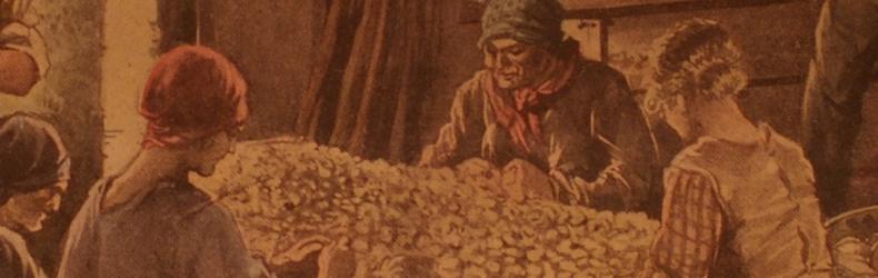 Le donne nell'allevamento del baco da seta