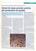 Incroci di razze avicole rustiche per produzioni di qualità