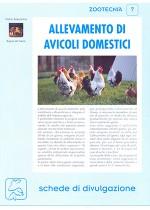 Allevamento di avicoli domestici