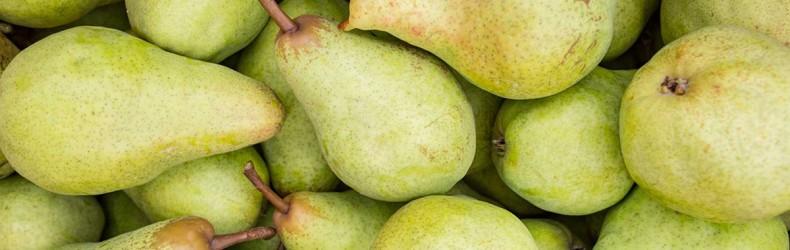 Frutteti casalinghi, di speculazione e sperimentali in Polesine