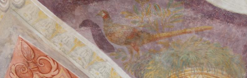 Il fagiano di Arquà Polesine