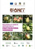Recupero di varietà antiche della frutticoltura veronese