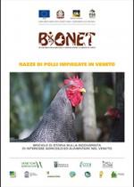 Razze di polli impiegate in Veneto