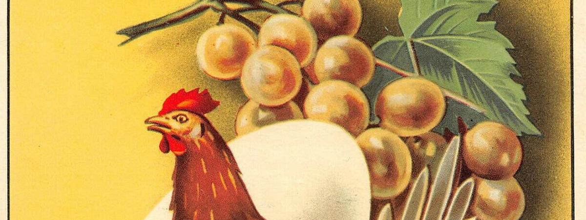 Marsala all'uovo