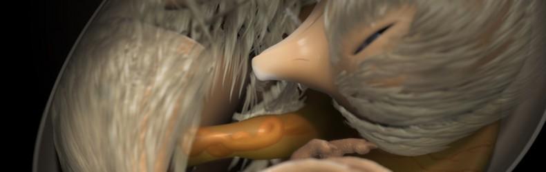 Sviluppo embrionale del pulcino